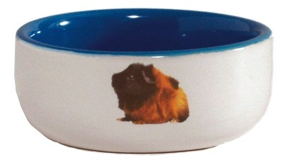 Beeztees Миска керамическая с изображением морской свинки, голубая 160мл*10см