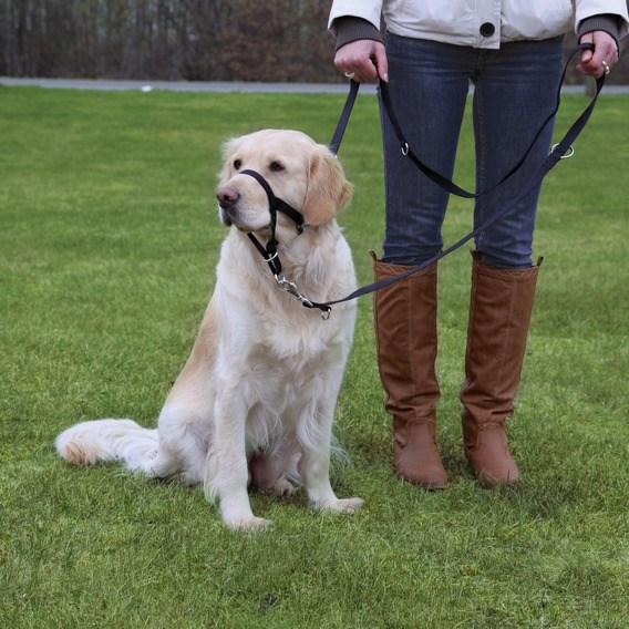 Trixie Намордник тренировочный 17-21 см (размер морды max 28 см)