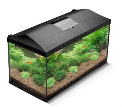 AQUAEL Крышка для прямоугольного аквариума LEDDY 410х250, светодиодный модуль LEDDY TUBE SUNNY  6 W / 6 500 К (1 шт.)